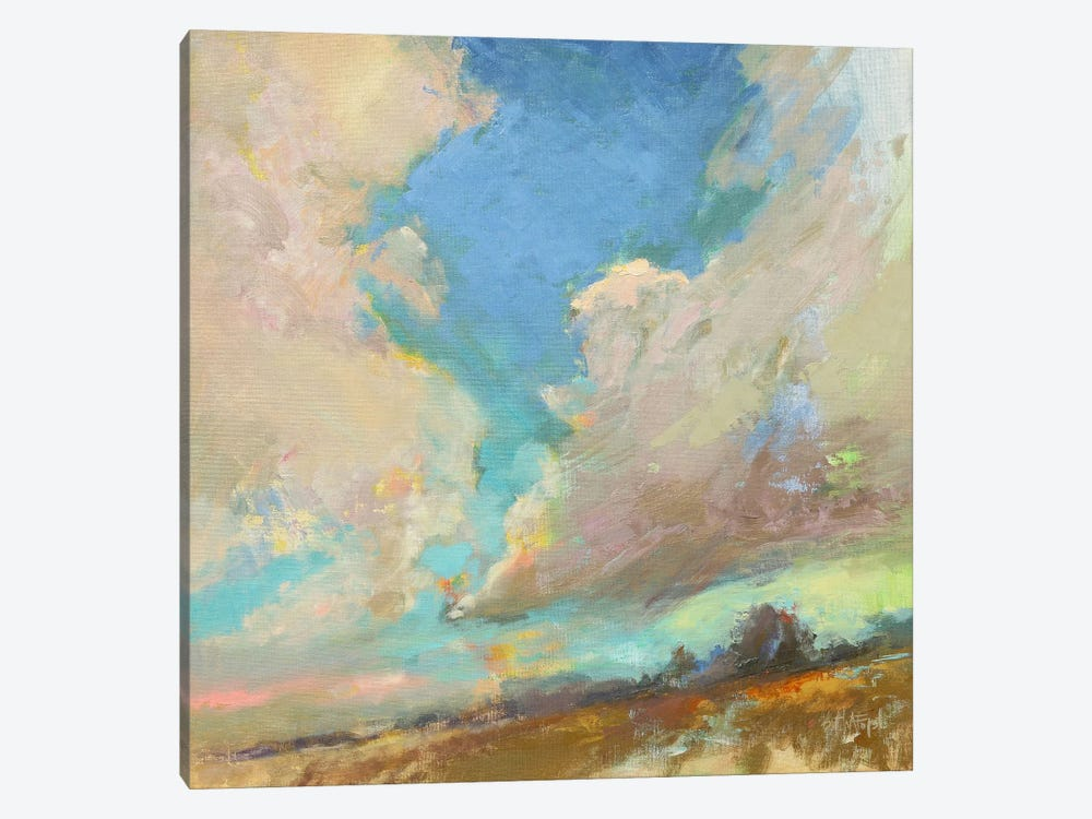 Clouds Got In My Way by Beth A. Forst 1-piece Canvas Art Print