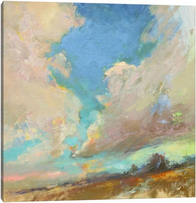 Clouds Got In My Way Canvas Art Print