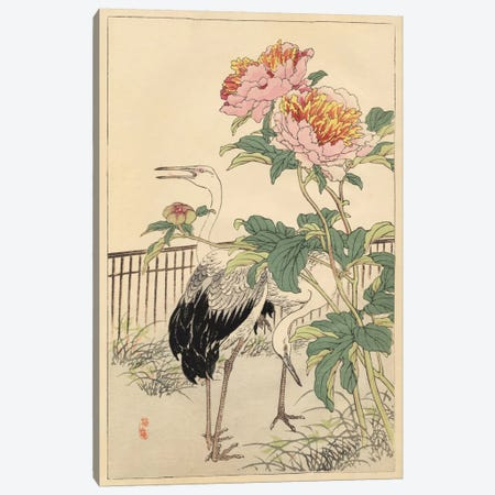 Crane And Peony Canvas Print #BAI1} by Bairei Canvas Wall Art
