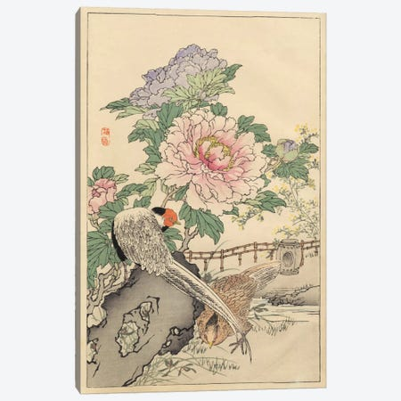 Pheasant And Peony Canvas Print #BAI2} by Bairei Canvas Artwork