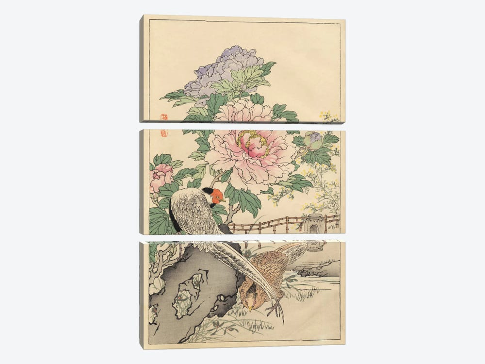 Pheasant And Peony by Bairei 3-piece Art Print