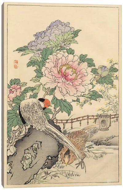 Pheasant And Peony Canvas Art Print