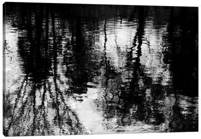 Reflecting Canvas Print #BAR2