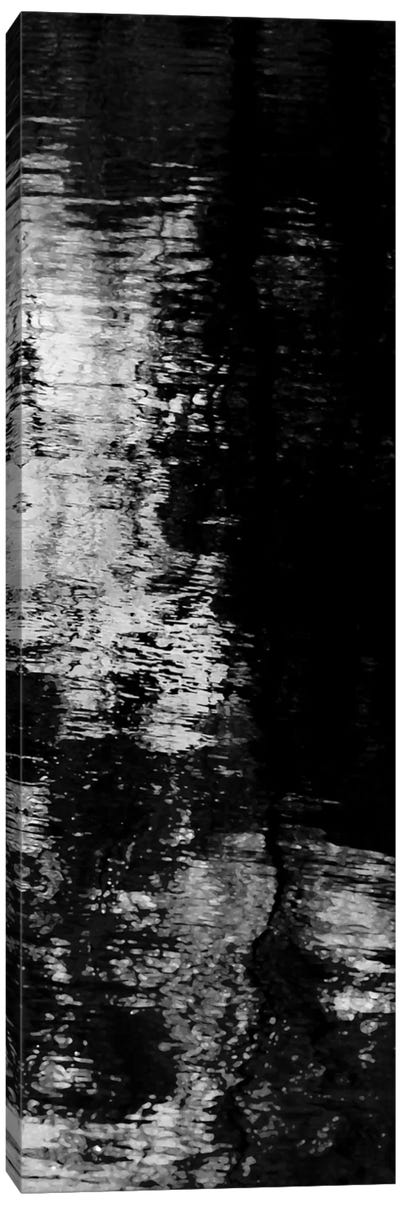Reflecting Triptych III Canvas Art Print