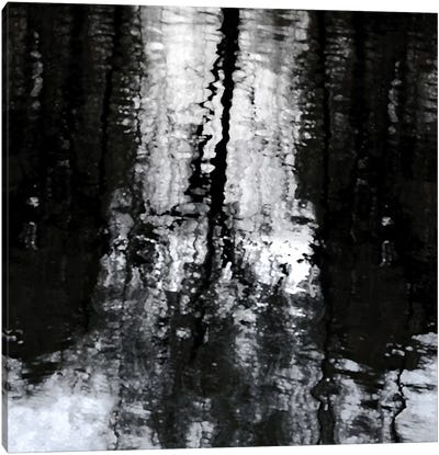 Reflective Canvas Art Print