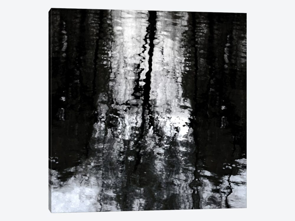 Reflective by Michael Barrett 1-piece Canvas Wall Art