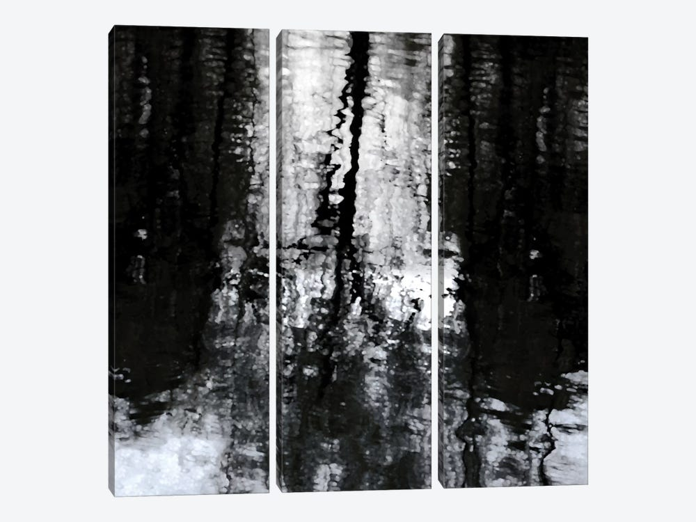 Reflective by Michael Barrett 3-piece Canvas Wall Art