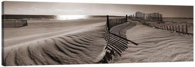 Dune Walk Canvas Art Print