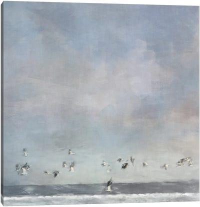 Birds Passing Canvas Art Print