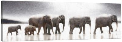 Elephant Mirage Canvas Art Print