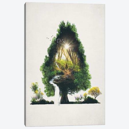 The Road Not Taken Canvas Print #BBI105} by Barrett Biggers Canvas Artwork
