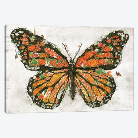 Monarch Butterfly Canvas Print #BBI118} by Barrett Biggers Canvas Art