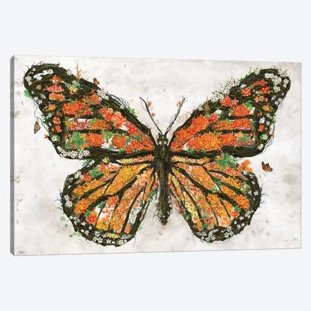 Monarch Butterfly Canvas Print #BBI118} by Barrett Biggers Canvas Art