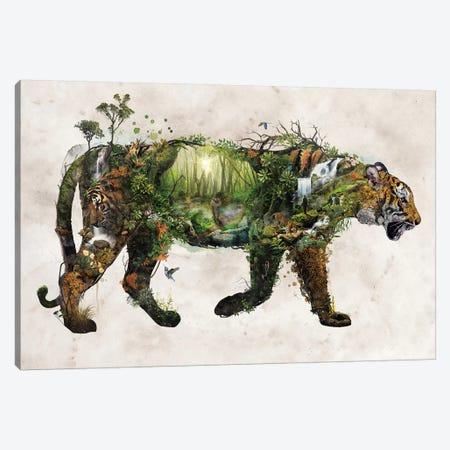 Surreal Tiger Canvas Print #BBI123} by Barrett Biggers Canvas Art Print
