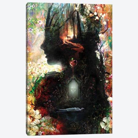 Dark Snow White Canvas Print #BBI124} by Barrett Biggers Canvas Artwork