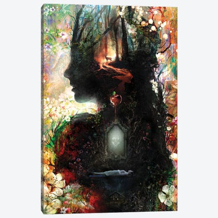 Dark Snow White Canvas Print #BBI124} by Barrett Biggers Canvas Artwork