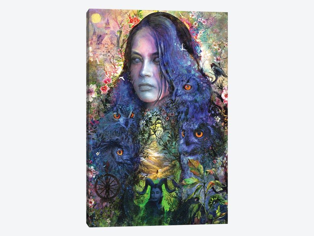 Sleeping Beauty by Barrett Biggers 1-piece Canvas Print