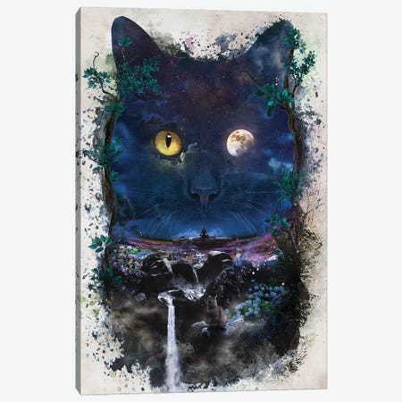 Night Cat Canvas Print #BBI128} by Barrett Biggers Canvas Print