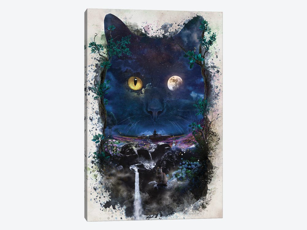 Night Cat by Barrett Biggers 1-piece Art Print