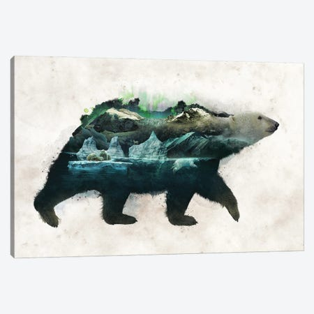 Polar Bear Canvas Print #BBI137} by Barrett Biggers Art Print