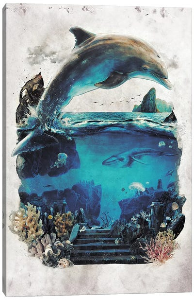 Dolphin Surreal Canvas Art Print