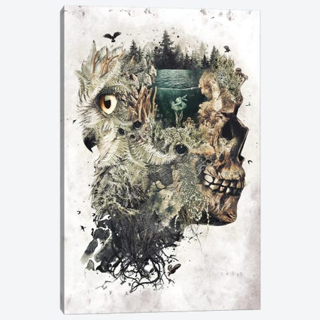 Forest Lake Dreamer Canvas Print #BBI36} by Barrett Biggers Canvas Art Print