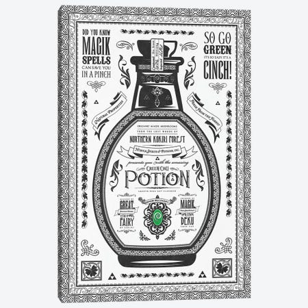 Green Potion Canvas Print #BBI43} by Barrett Biggers Canvas Art Print