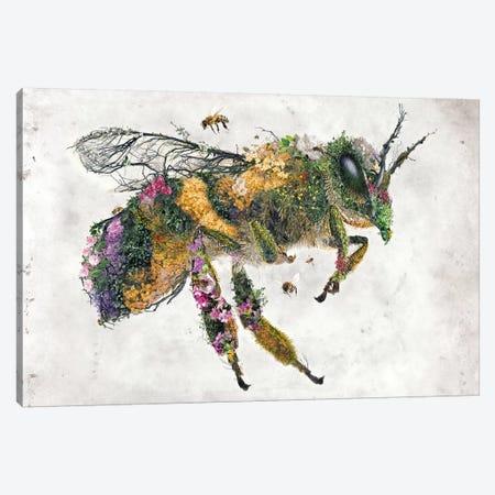 Must Bee The Honey Canvas Print #BBI71} by Barrett Biggers Canvas Wall Art