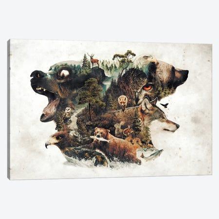 Predators And Prey Canvas Print #BBI77} by Barrett Biggers Canvas Print