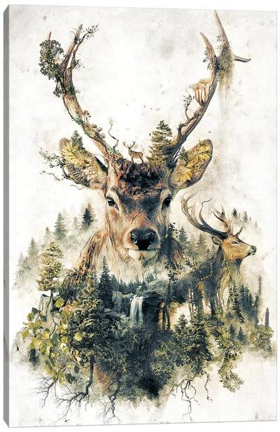 Surreal Deer Canvas Art Print