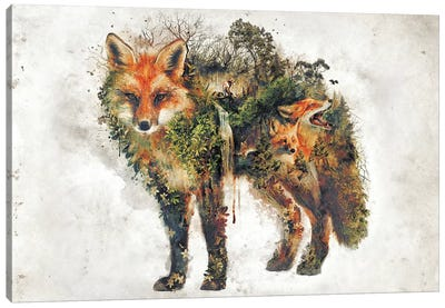 Surreal Fox Canvas Art Print