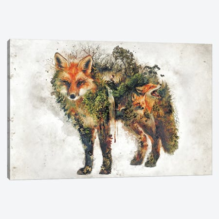 Surreal Fox Canvas Print #BBI92} by Barrett Biggers Canvas Wall Art