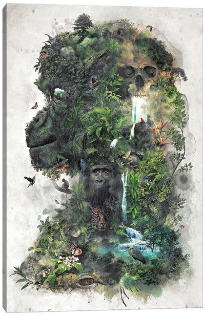 Surreal Gorilla Canvas Art Print