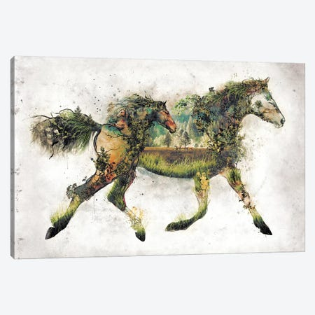 Surreal Horse Canvas Print #BBI94} by Barrett Biggers Canvas Print