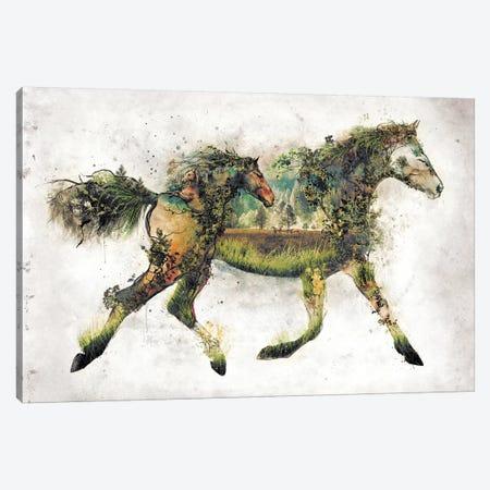 Surreal Horse Canvas Print #BBI94} by Barrett Biggers Canvas Print