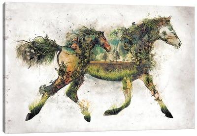 Surreal Horse Canvas Art Print