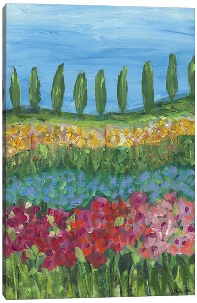 Tuscany Days Canvas Art Print