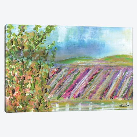 Terrace View After The Rain Canvas Print #BBN246} by Brenda Bush Canvas Art