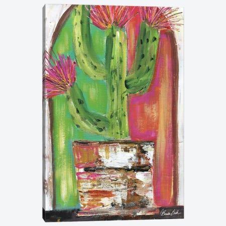 Pueblo Cactus Canvas Print #BBN253} by Brenda Bush Canvas Artwork