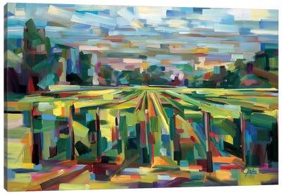 A Familiar Vista Canvas Art Print
