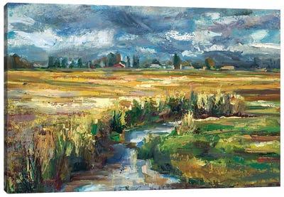 Skagit Creek  Canvas Art Print
