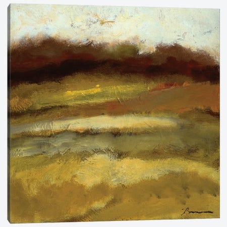Amidst the Fields IV Canvas Print #BBR17} by Bradford Brenner Canvas Artwork