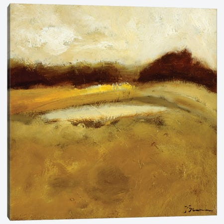 Amidst The Fields I 3-Piece Canvas #BBR3} by Bradford Brenner Canvas Print
