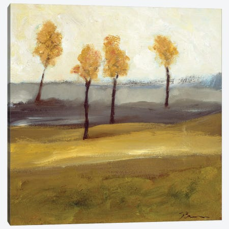 Autumn Tree I Canvas Print #BBR4} by Bradford Brenner Canvas Artwork