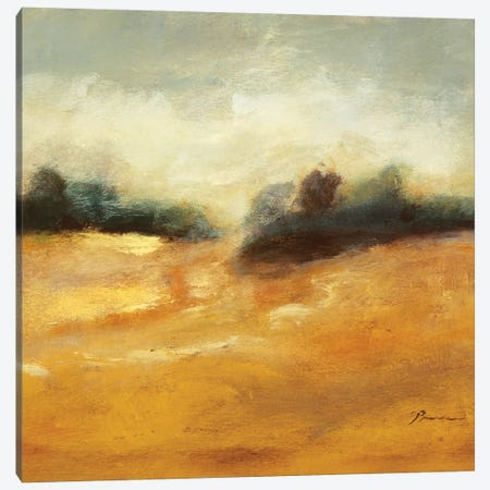 All That Glitters is Gold II Canvas Print #BBR55} by Bradford Brenner Canvas Art