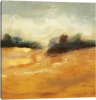 All That Glitters is Gold II Canvas Art Print