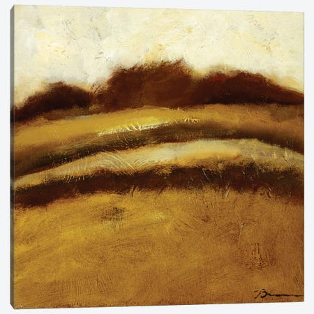 Amidst the Fields II Canvas Print #BBR58} by Bradford Brenner Canvas Art Print