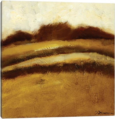 Amidst the Fields II Canvas Art Print