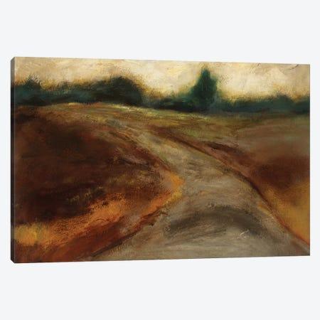 Mystery Canvas Print #BBR62} by Bradford Brenner Canvas Art