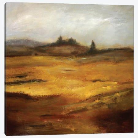 Quieter Than Anything Canvas Print #BBR63} by Bradford Brenner Canvas Artwork